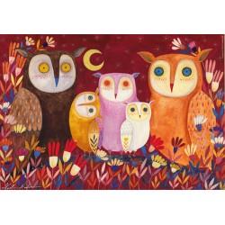 Andrea KÜRTI - Owls