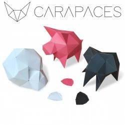 Carapaces by Doug -Blanc