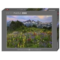 Puzzle 2000 pièces Tatoosh mountains