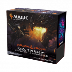 Magic The Gathering : Forgotten realms Bundle (10 boosters)